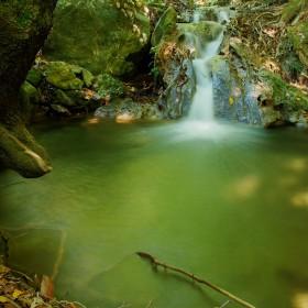 Little Creek in Magic Forest