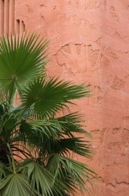 barcelona_gaudi_palm_contrast.jpg
