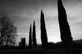 barcelona_sunset.jpg