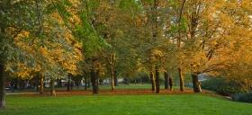 Park_in_berlin_Spreeufer.jpg