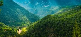 Bossen van Euboae - een wandelparadijs