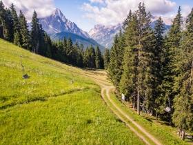 Dolomites View