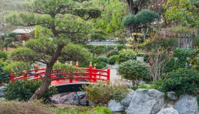 09 Monaco - Jardin Japonois