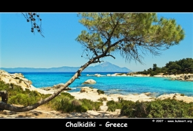 Beacht with Tree: Chalkidiki Greece