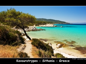 Kavourotrypes on Sithonia