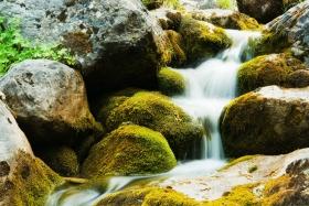 Creek at Mount Olympus