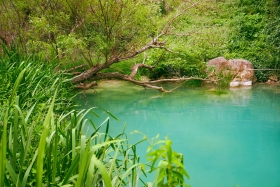 Polilimnio - groen water