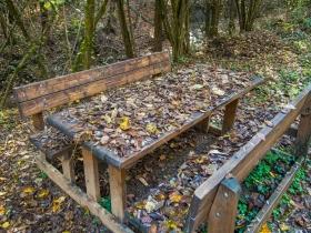 Picnic met herfstbladeren